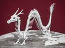 Asian Dragon Skeleton in White Strong & Flexible