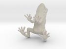 frog 2cm in Sandstone