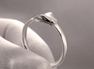 Ouroboros Ring in Polished Silver
