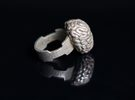 Cogito Ergo Sum Brain Ring in Stainless Steel