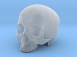 Skull Top scale 1/6