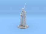 Raistlin Miniature