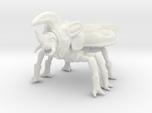 Beetleback Dragon