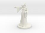 Dragonborn Sorceror 4