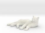 1/24 Sleeping Cat