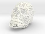Nautilus Sugar Skull - MEDIUM