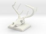 Colby's Deer