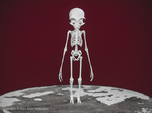Grey Alien Skeleton