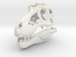 Tyrannosaurus - dinosaur skull replica
