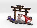 International Karate (IK+) - L