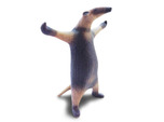 Come at me Bro, I'm an Anteater