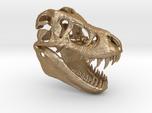 Tyrannosaurus Dinosaur Skull - T-Rex