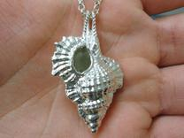 Silver Shell Pendant in Polished Silver