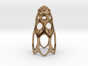 jamD Radiolarian 003 in Polished Brass