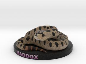 Custom Snake Figurine - Maddox in Full Color Sandstone