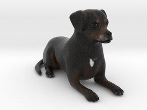 Custom Dog Figurine - Buzz in Full Color Sandstone