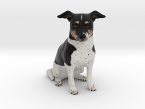 Custom Dog Figurine - Ducky in Full Color Sandstone