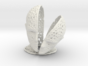 Head Voronoi in White Natural Versatile Plastic