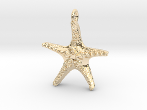 Starfish Pendant 1 - small in 14k Gold Plated Brass