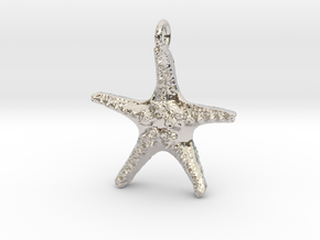Starfish Pendant 1 - small in Rhodium Plated Brass