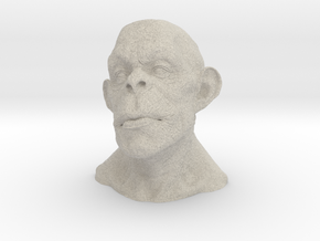 Apeman in Natural Sandstone