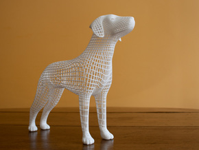Wireframe dog in White Strong & Flexible