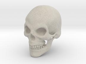 Skull Print in Natural Sandstone