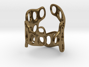 s3r029s5 GenusReticulum in Polished Bronze