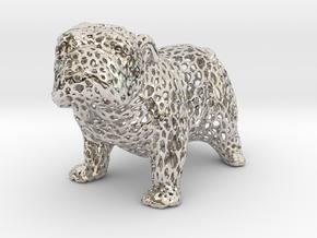 Bulldog Voronoi 45mm in Rhodium Plated Brass