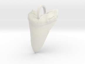 Megalodon Shark Tooth in White Natural Versatile Plastic