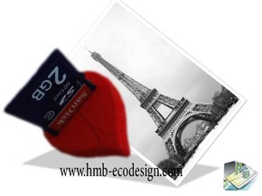 "Porte USB et carte SD ""FRENCH  SAINT VALENTIN""  in White Natural Versatile Plastic"