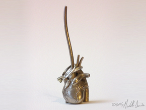 Anatomical Heart Ring Holder in Polished Bronzed Silver Steel