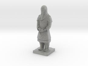 Terracotta Guard  in Metallic Plastic