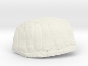 ShellProsthetic3 in White Natural Versatile Plastic