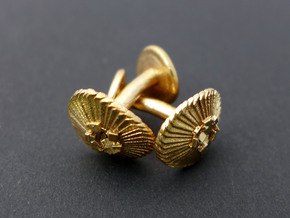 Coccolithus Cufflinks  in Raw Bronze