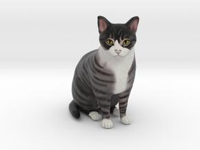 Custom Cat Figurine - Ivy in Full Color Sandstone