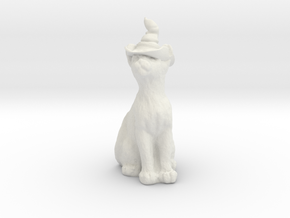 Cat In Witches Hat in White Natural Versatile Plastic