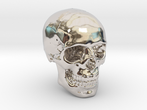 1/24  Human Skull Crane Schädel че́реп in Rhodium Plated Brass