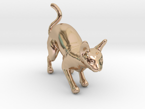 Stalking Blue Sphynx in 14k Rose Gold