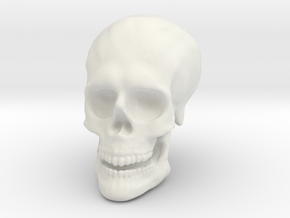 Solid Skull  in White Natural Versatile Plastic