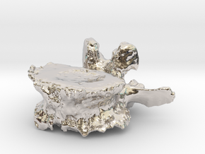 ICS1992SR50 Lumbar Vertebra in Rhodium Plated Brass