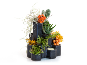Graphenium Planter in Matte Black Porcelain