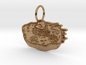 Animal Cell Pendant in Polished Brass