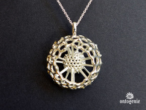 Spumellaria spineless Radiolarian pendant in Polished Silver