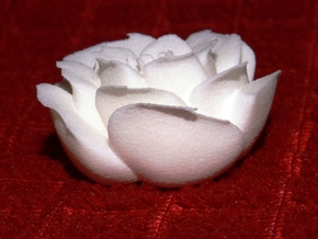Rose Motif Small in White Strong & Flexible Polished