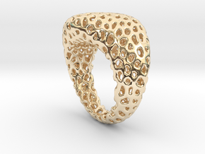 Swing ring T20 in 14K Gold