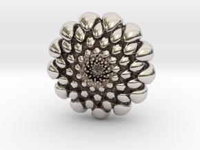 chrysanthemum -kiku- in Rhodium Plated Brass