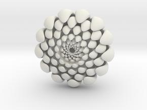 chrysanthemum -kiku- in White Natural Versatile Plastic