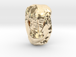 Trilobite Fossil  in 14K Yellow Gold