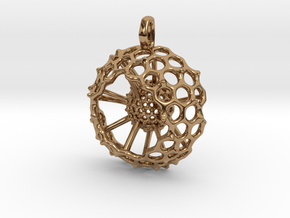 Spumellaria spineless Radiolarian - Science Jewelr in Polished Brass